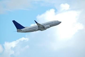 B737 In Flight